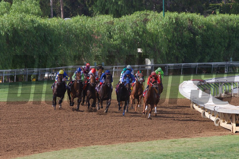 The field rounded the final turn in the Breeders' Cup Turf Sprint (G. I) on October 31, 2014.