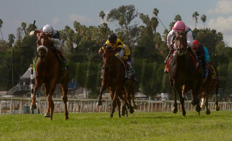 #12 Main Sequence with jockey John Velazquez wins the Breeders Cup Turf Nov. 1, 2014 at Santa Anita Race Track in Arcadia California.  Photo by Skip Dickstein