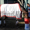 Caption:  Big Macher getting drink of water while being hotwalked. <br /> Scenes at Santa Anita  on Oct. 29, 2014, in preparation for Breeders' Cup  in California.<br /> 1Origs10_29_14 image792<br /> Photo by Anne M. Eberhardt