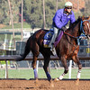 Belle Gallantey Breeders' Cup Distaff Chad B. Harmon