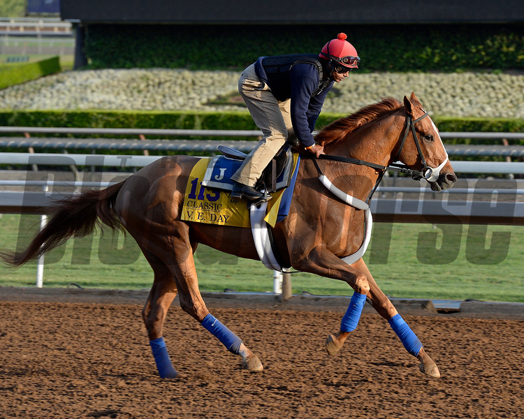 Caption:  V.E. Day<br /> Scenes at Santa Anita in preparation for Breeders' Cup  in California on Oct. 27, 2014.<br /> 1Origs10_27_14 image801<br /> Photo by Anne M. Eberhardt