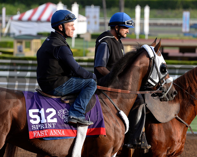 Gary Stevens on Fast Anna Oct. 26, 2014, at Santa Anita in preparation for the Breeders' Cup.<br /> 2Origs10_26_14 image427<br /> Anne M. Eberhardt photo