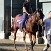 Rich Tapestry Santa Anita Park Breeders' Cup Chad B. Harmon