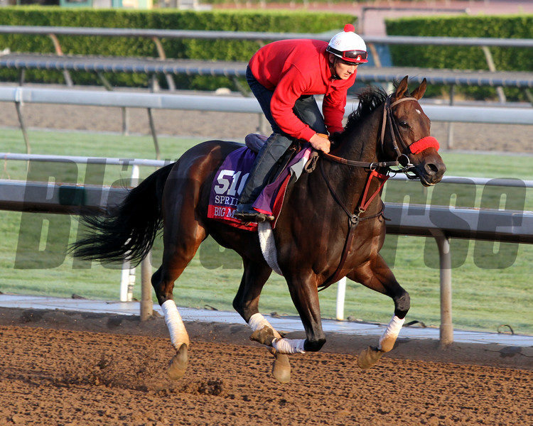 Big Macher Breeders' Cup Santa Anita Park Chad B. Harmon