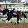 Close Hatches Breeders' Cup Santa Anita Park Chad B. Harmon