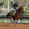 Imperative Breeders' Cup Santa Anita Chad B. Harmon