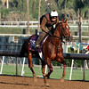 Home Run Kitten Breeders' Cup Santa Anita Park Chad B. Harmon
