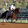 Fed Biz Breeders' Cup Santa Anita Park Chad B. Harmon