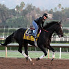 Prayer for Relief Breeders' Cup Classic Santa Anita Park Chad B. Harmon