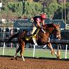 V. E. Day Breeders' Cup Classic Santa Anita Park Chad B. Harmon