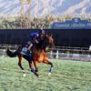 Aktabantay Breeders' Cup Santa Anita Park Chad B. Harmon
