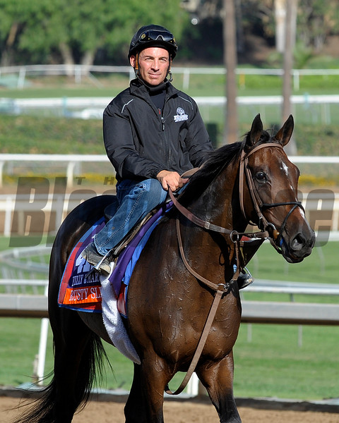 Rusty Slipper with Aaron Gryder for trainer Graham Motion.<br /> at Santa Anita in preparation for Breeders' Cup  in California on Oct. 25, 2014.<br /> Photo by Anne M. Eberhardt