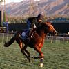 Commemorative Breeders' Cup Juvenile Turf Santa Anita Park Chad B. Harmon