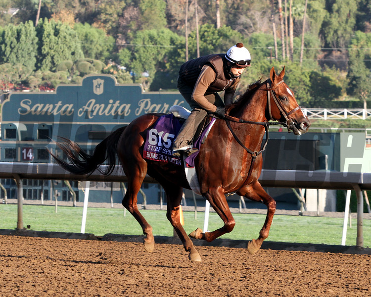 Home Run Kitten Breeders' Cup Turf Sprint Santa Anita Park Chad B. Harmon