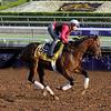 Footbridge Breeders' Cup Classic Santa Anita Park Chad B. Harmon