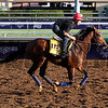 Toast of New York Breeders' Cup Santa Anita Park Chad B. Harmon