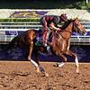 Kaigun Breeders' Cup Santa Anita Park Chad B. Harmon