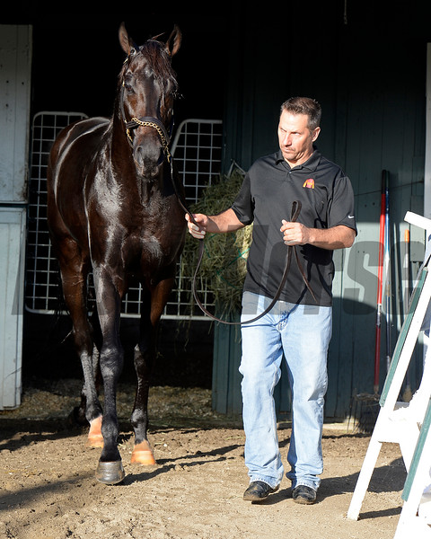 Caption:  Kelly Breen with Pants on Fire<br /> Scenes at Santa Anita  on Oct. 27, 2014, in preparation for Breeders' Cup  in California.<br /> 1Origs10_28_14 image458<br /> Photo by Anne M. Eberhardt