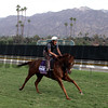Undrafted Breeders' Cup Santa Anita Park Chad B. Harmon