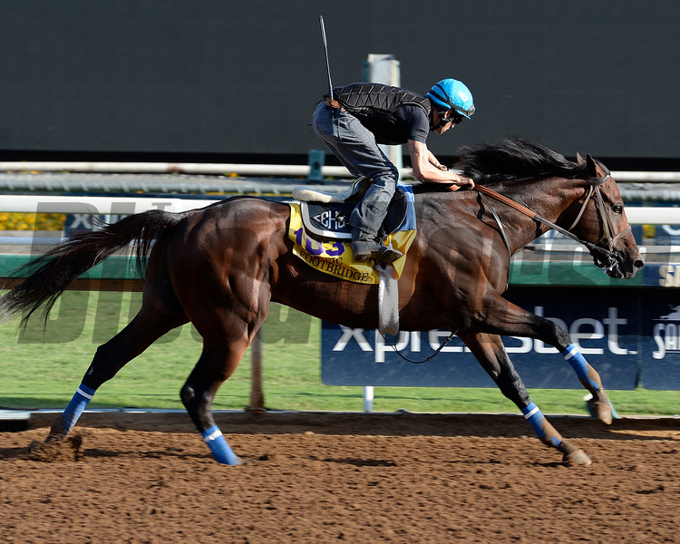 Caption:  Footbridge<br /> Scenes at Santa Anita in preparation for Breeders' Cup  in California on Oct. 27, 2014.<br /> 1Origs10_27_14 image967<br /> Photo by Anne M. Eberhardt