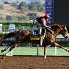 V. E. Day Santa Anita Park Breeders' Cup Classic Chad B. Harmon