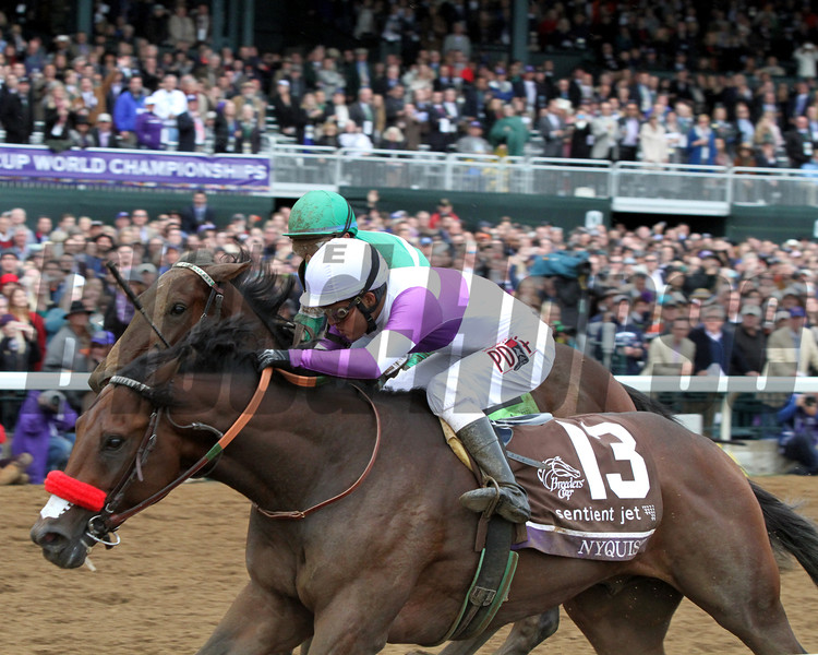 Nyquist Breeders' Cup Juvenile