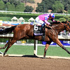 Champagne Room wins the 2016 Breeders' Cup Juvenile Fillies<br /> Dave Harmon Photo