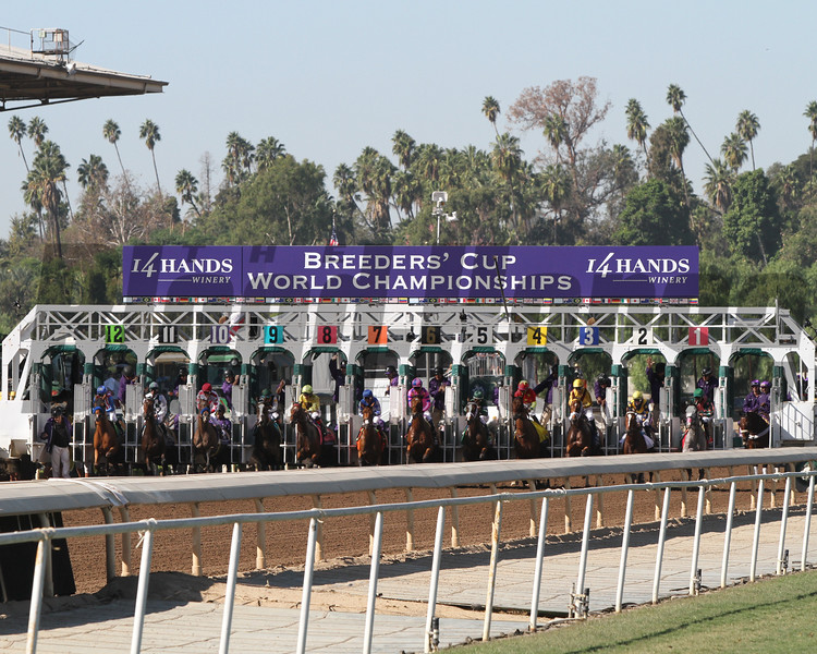 Breeders' Cup Juvenile Fillies Start Chad B. Harmon