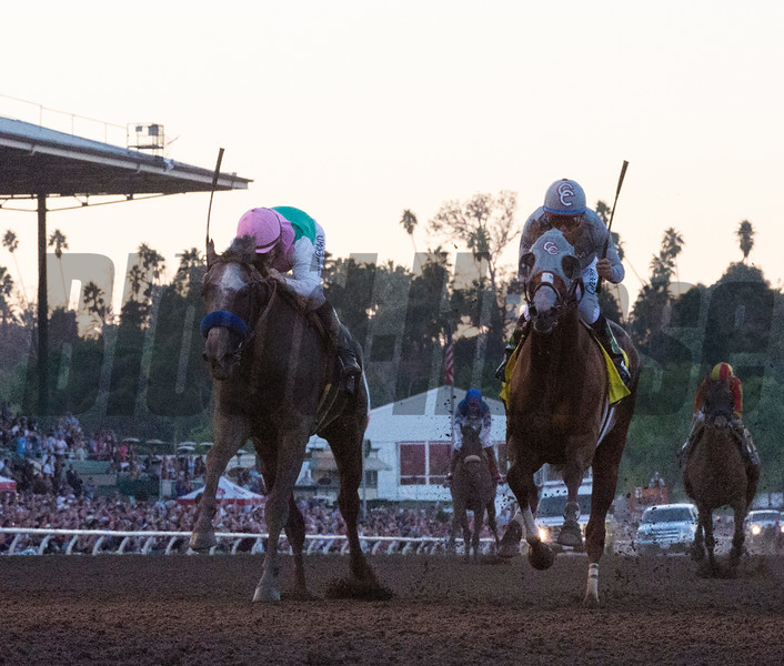 Arrogate passes California Chrome on the way to the victory in the Breeders' Cup Classic at Santa Anita Park Nov. 5, 2016 in Arcadia, California. Photo by Skip Dickstein