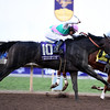 Arrogate wins the 2016 Breeders' Cup Classic<br /> Dave Harmon