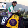 Arrogate wins the 2016 Breeders' Cup Classic<br /> Dave Harmon Photo