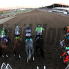 Breeders' Cup Classic Starting Gate Remote Chad B. Harmon