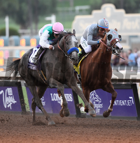 Arrogate on the outside passes California Chrome on the way to the victory in the Breeders' Cup Classic at Santa Anita Park Nov. 5, 2016 in Arcadia, California. Photo by Skip Dickstein