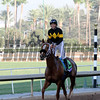 Finest City Breeders' Cup Filly & Mare Sprint Chad B. Harmon