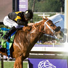 Finest City and Mike Smith win the Filly Mare Sprint (gr. I) at Santa Anita on Nov. 5, 2016, in Arcadia, California.