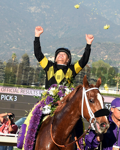 Finest City wins the 2016 Breeders' Cup Filly & Mare Sprint<br /> Dave Harmon Photo