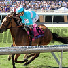 Lady Eli Breeders' Cup Filly & Mare Turf Chad B. Harmon