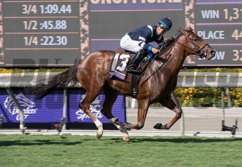 Oscar Performance, with Jose Ortiz up, wins the Juvenile Turf (gr. I) at Santa Anita on Nov. 4, 2016, in Arcadia, California.
