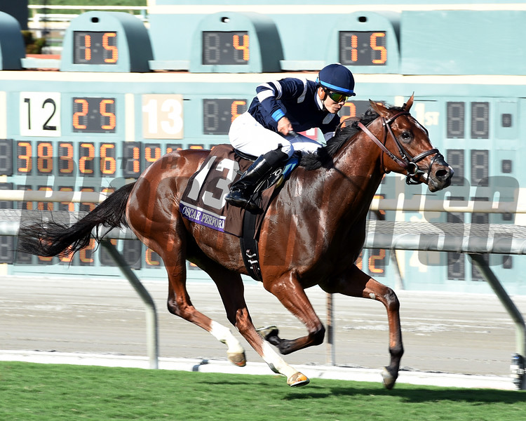 Oscar Performance wins the 2016 Breeders' Cup Juvenile Turf<br /> Dave Harmon Photo