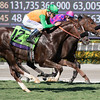 Obviously, with Flavien Prat up, edges out Om to win the Turf Sprint (gr. I) at Santa Anita on Nov. 5, 2016, in Arcadia, California.