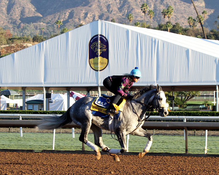 Win The Space Breeders' Cup Classic Chad B. Harmon