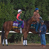 Beholder<br /> Works at Santa Anita in preparation for 2016 Breeders' Cup on Oct. 31, 2016, in Arcadia, CA.