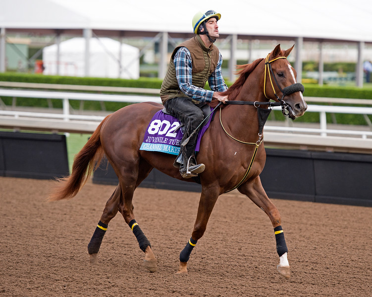 Channel Maker<br /> Works at Santa Anita in preparation for 2016 Breeders' Cup on Nov. 1, 2016, in Arcadia, CA.