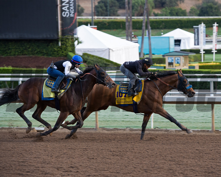 Hoppertunity works in company with Raffi. Classic<br /> Works at Santa Anita in preparation for 2016 Breeders' Cup on Oct. 29 2016, in Arcadia, CA.