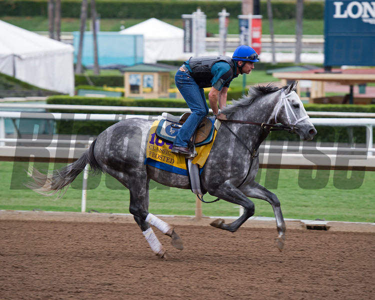 Frosted<br /> Works at Santa Anita in preparation for 2016 Breeders' Cup on Oct. 30, 2016, in Arcadia, CA.