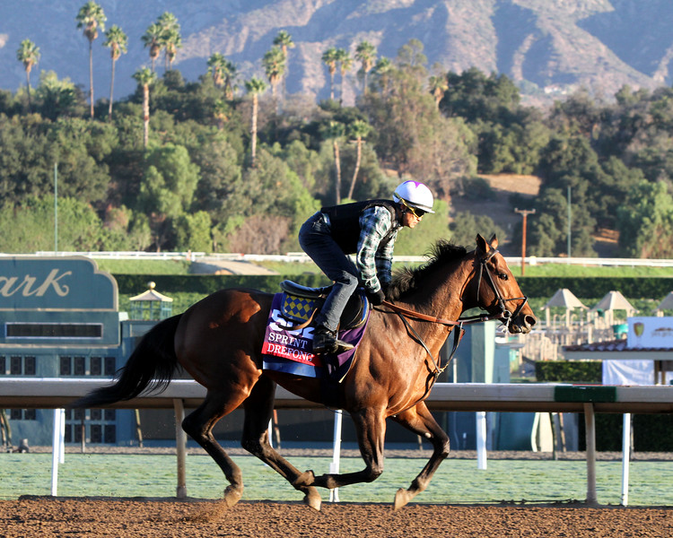 Drefong Breeders' Cup Sprint Chad B. Harmon