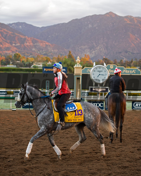 Win the Space, Classic<br /> Works at Santa Anita in preparation for 2016 Breeders' Cup on Oct. 29 2016, in Arcadia, CA.