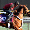 Mind Your Biscuits Breeders' Cup Sprint Chad B. Harmon