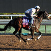 La Force Breeders' Cup Juvenile Fillies Turf Chad B. Harmon