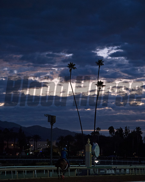 Works at Santa Anita in preparation for 2016 Breeders' Cup on Oct. 29 2016, in Arcadia, CA.